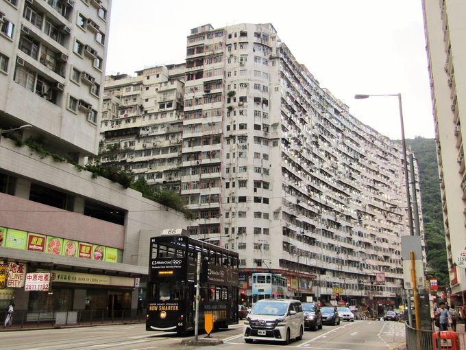 目の前に立ちはだかる巨大な雑居ビルのコンプレックス!