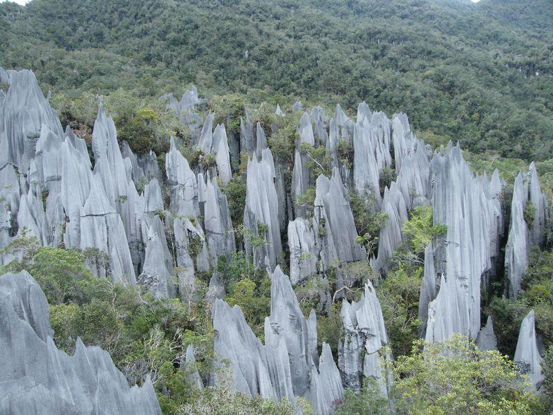 「グヌン・ムル国立公園」の画像検索結果