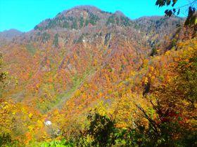深山幽谷に浸る!霊峰白山の麓・石川「中宮温泉」は入って飲んでヘルシー|石川県|トラベルjp<たびねす>