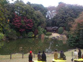 春と秋限定!東京上野の国立博物館の「庭園」を散策!|東京都|トラベルjp<たびねす>
