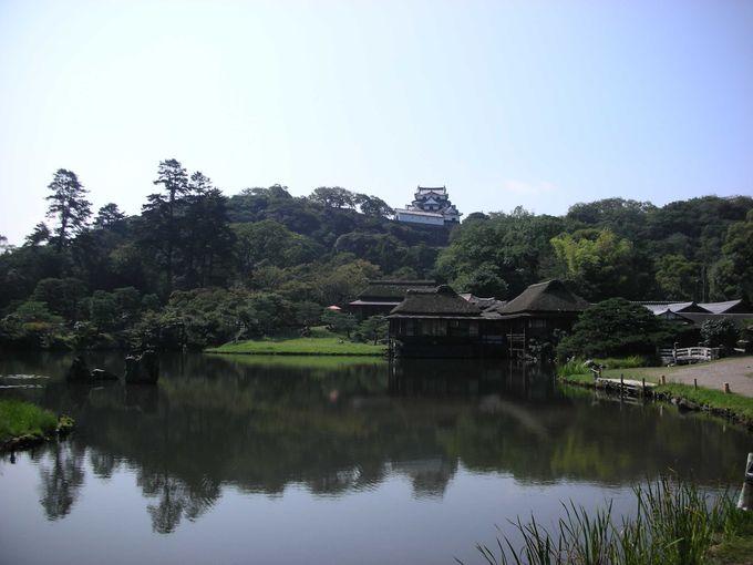 世界遺産登録こそできていないものの、彦根城にしかない魅力がいっぱい