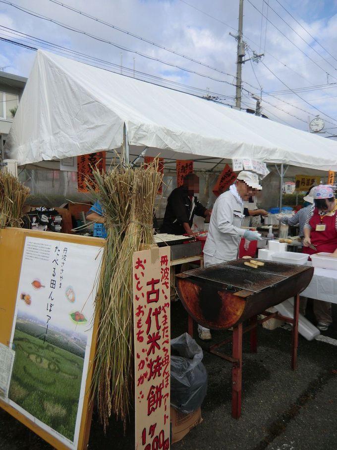 丹波篠山の食がてんこもり!食欲の秋を謳歌しよう!