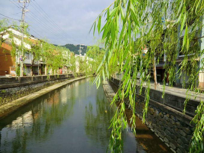 どこから撮っても絵になる風景、よく見ると川には錦鯉も!