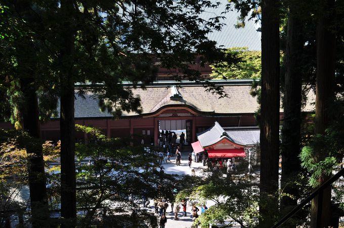 三塔の中でも最もメジャーな東塔は、比叡山延暦寺発祥の地
