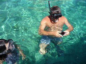 イタリア・トレミティ諸島で、天然のウニを手づかみしよう