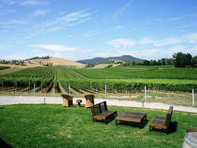 ワイン&美食!メルボルン近郊の名醸地ヤラバレーで楽しむワイナリーツアー