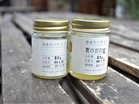 銀座のど真ん中にミツバチ出現!外国人にも人気の銀座ミツバチ見学ツアー