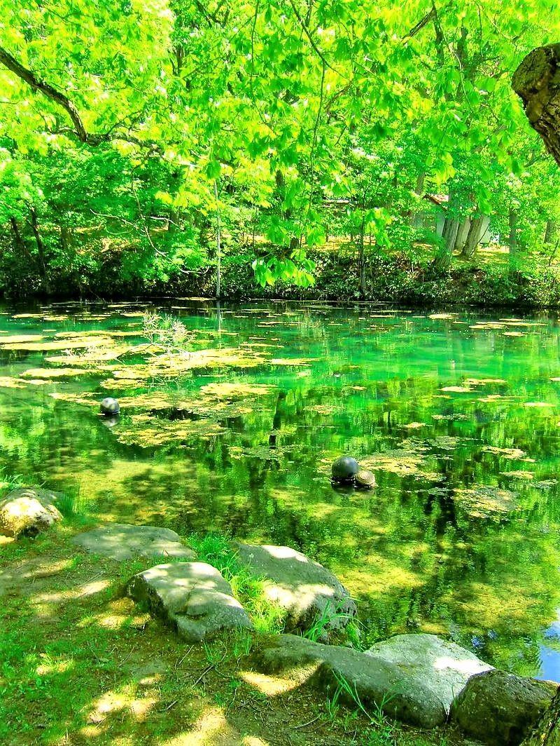 惹きこまれる緑の絶景!エメラルドグリーンの「鳥沼公園」