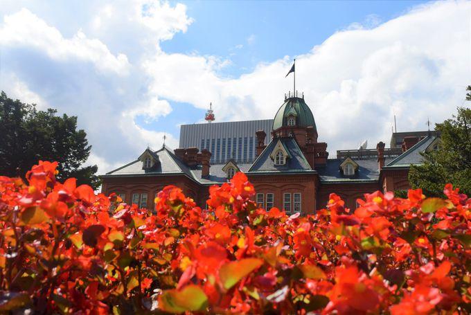桜以外も。春が過ぎても美しい赤れんが庁舎の前庭