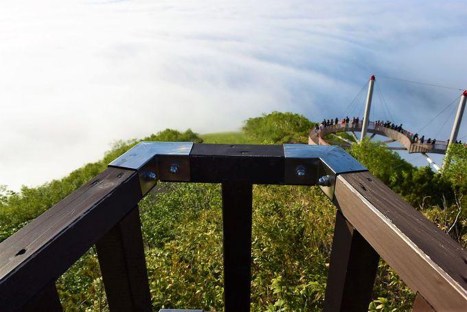 高さで変わる雲の見え方「Sky Wedge」〜2つの新展望スポット、山頂へ