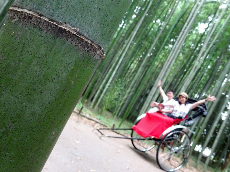 京都・嵐山の竹林の道を人力車で!観光マップいらずで快適な魅力6つ