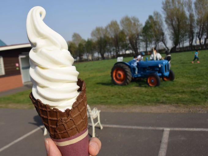 たった1種類!それでもわざわざ食べに行きたい「八紘学園」のソフトクリーム!