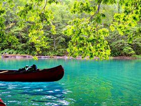 9年連続水質日本一。カヌーで出会う「支笏湖」ブルーの透明度に驚愕