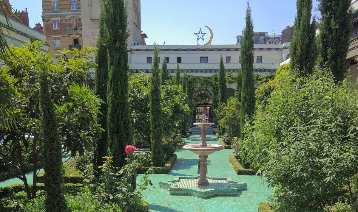 ここはオアシス?緑が鮮やかな中庭
