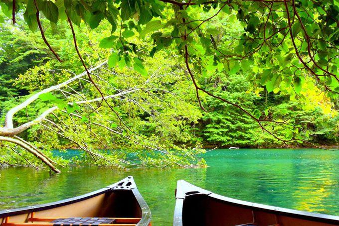 支笏湖の美しさをアクティビティで堪能!