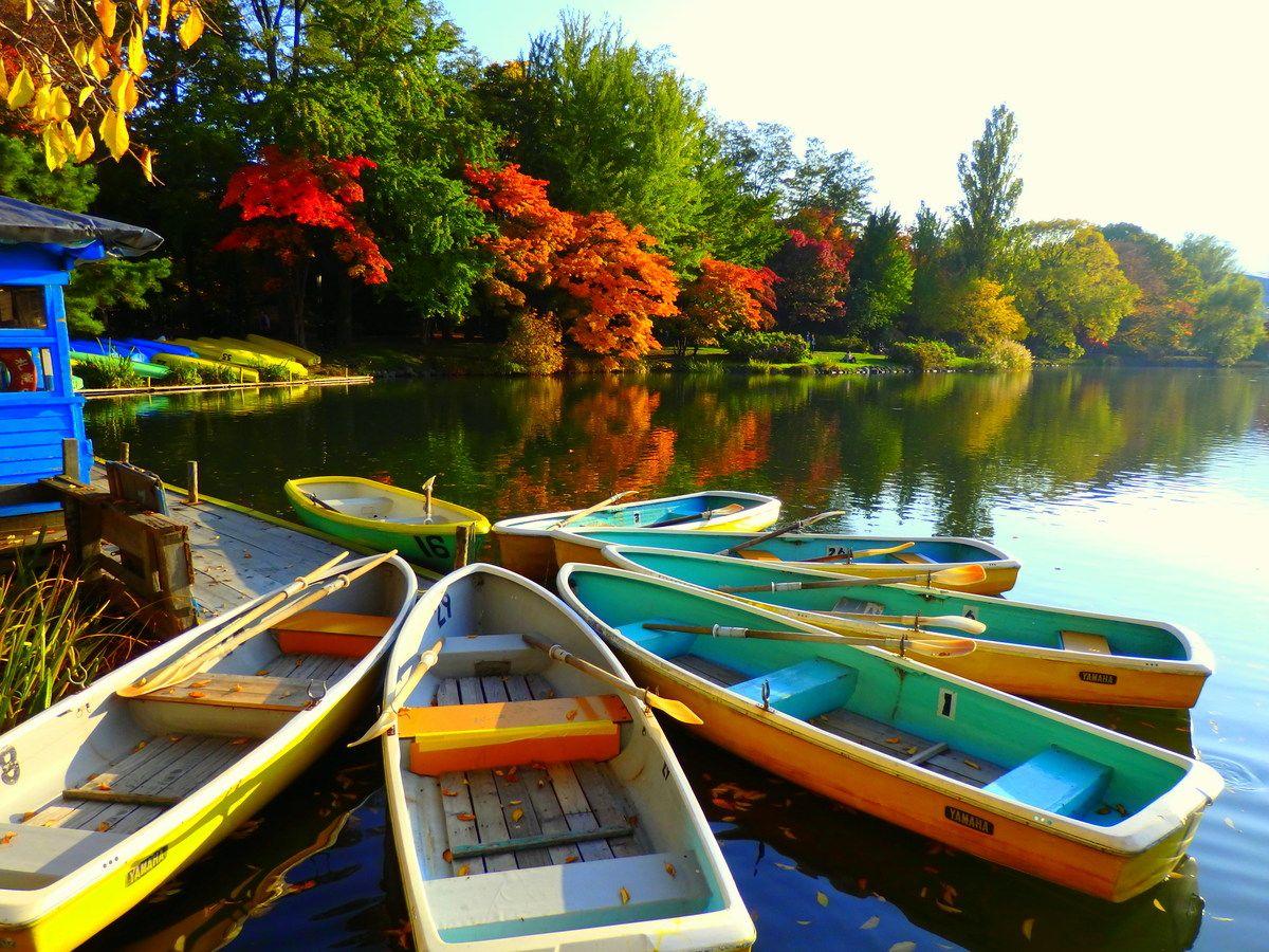 まるでフィンランド!森と水と彩りの秋