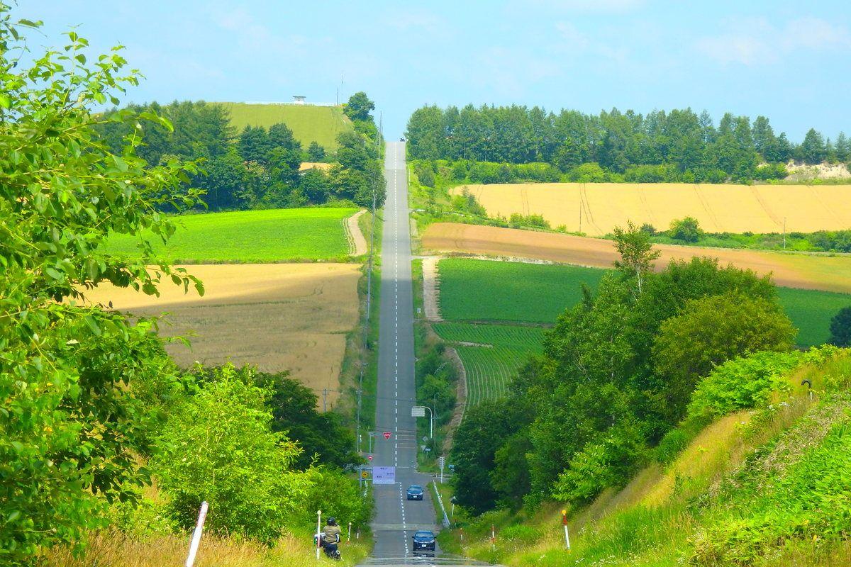 「ジェットコースターの路」の谷には『止まれ』の標識が。安全確認をお忘れなく。