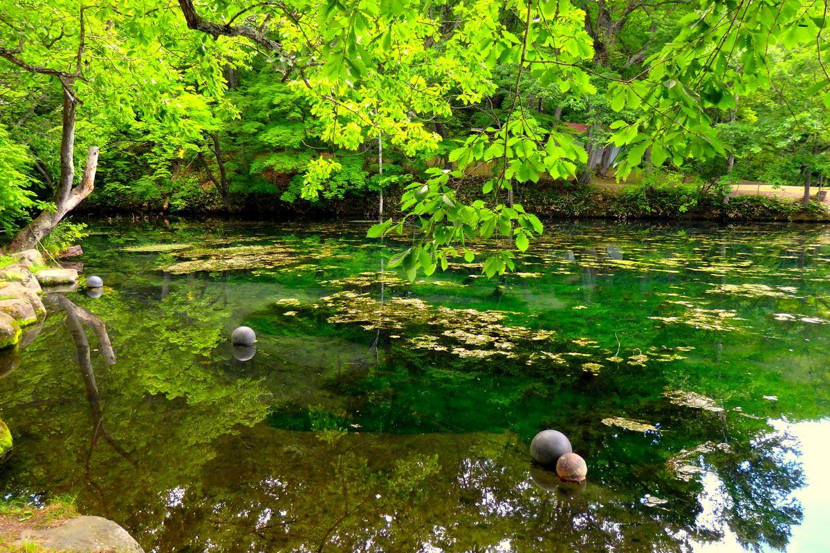 ラベンダーが終わる8月以降も美しい富良野絶景スポットまとめ