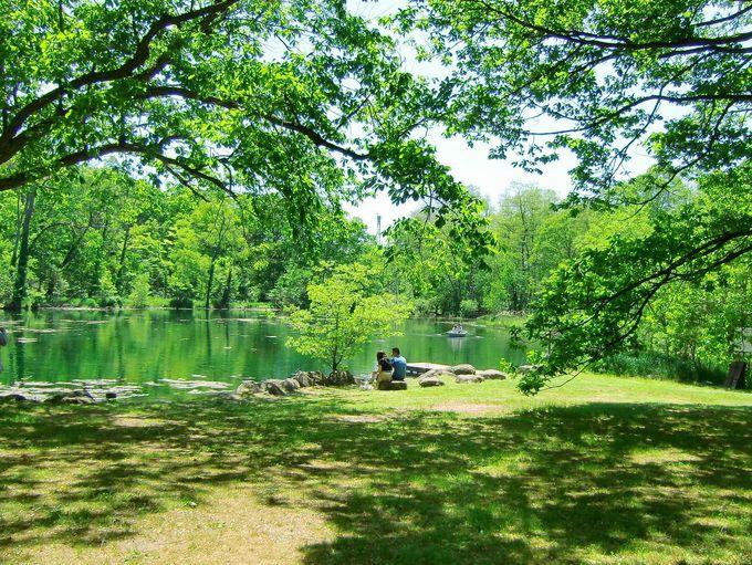 3.鳥沼公園(富良野市)