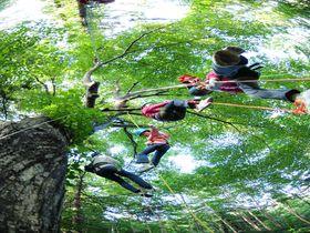 家族で楽しい「星野リゾート トマム」アクティビティ5選はコレ!北海道の大自然を遊びつくせ!|北海道|トラベルjp<たびねす>