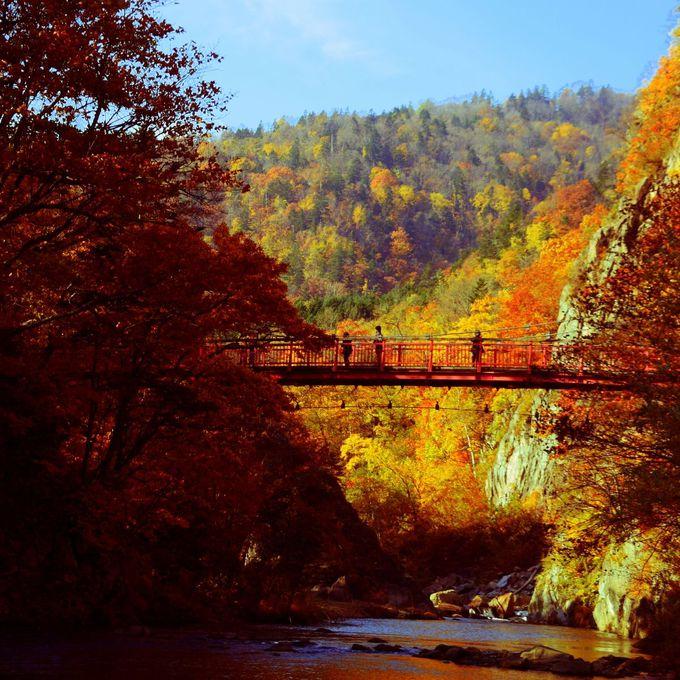 車で60分。定山渓温泉で温泉とともに味わいたい渓谷の紅葉