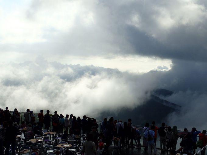 雲が襲ってくる!雲に包まれる瞬間を味わえる「悪天候型雲海」