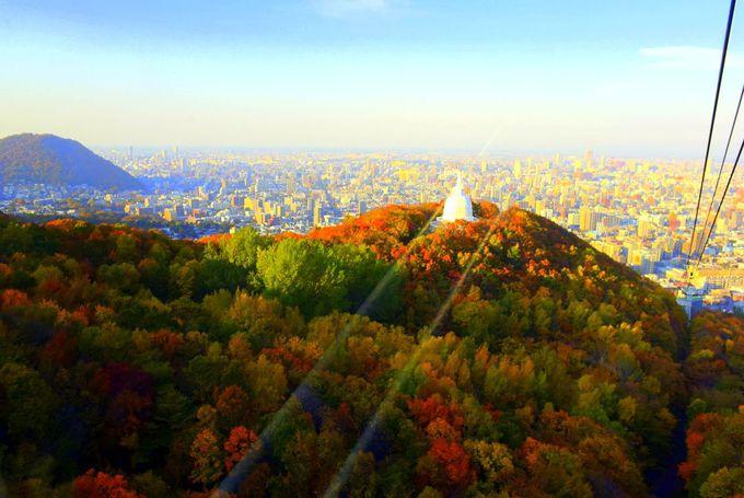 空から紅葉を見下ろすロープウェイの特別感とディープ感の味わえる登山やハイキング。