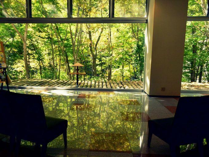 ロビー、部屋、温泉でも。館内で層雲峡の景色が楽しめる