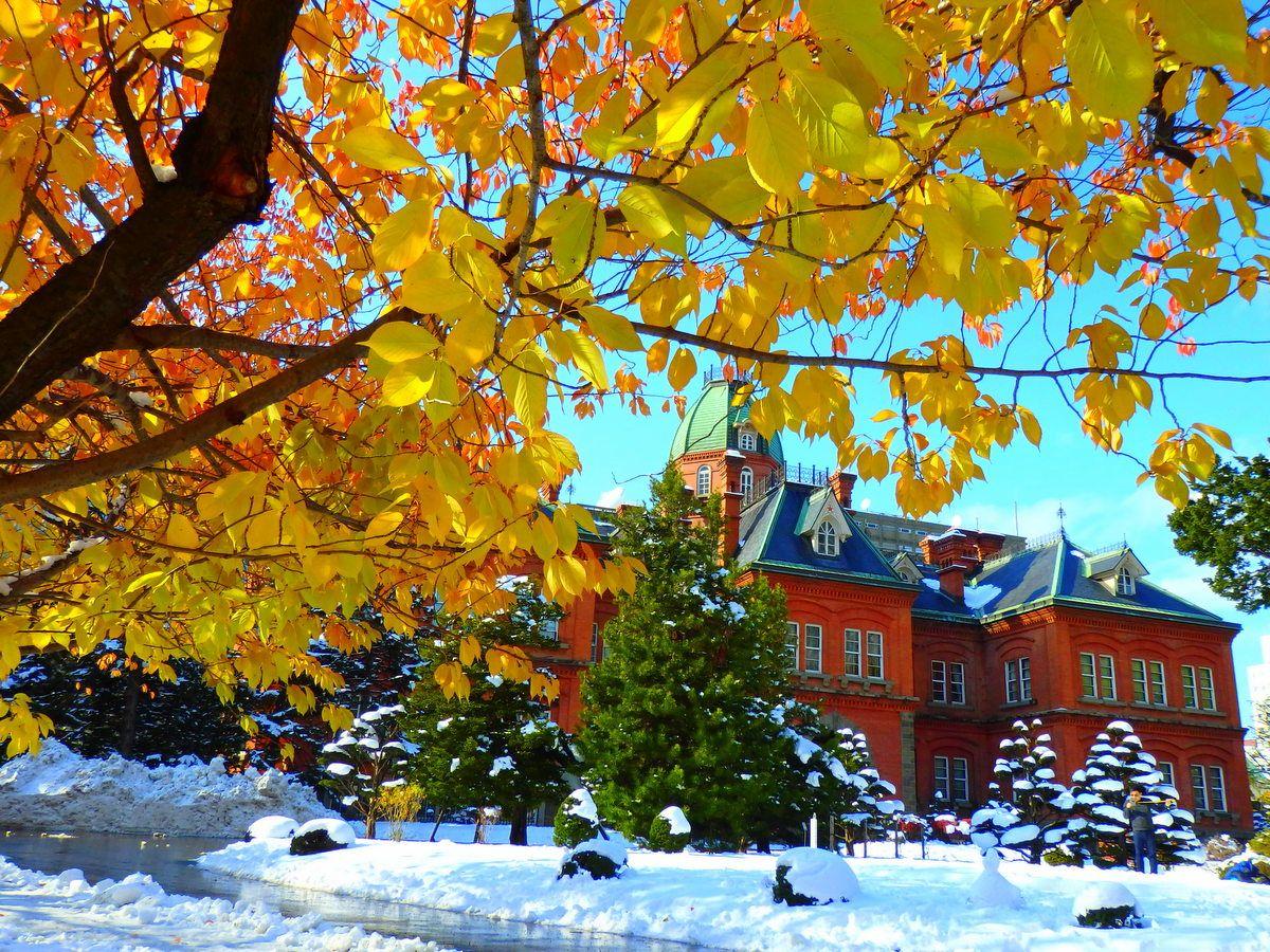 本格的な雪遊びができるのは12月下旬〜!降り始めの時期は薄氷が楽しい