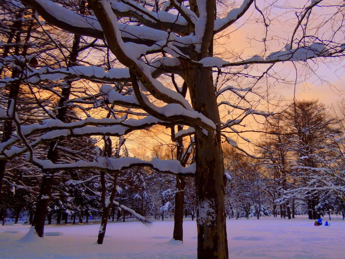 肌と肺で感じる寒さは美しい景色が癒してくれる