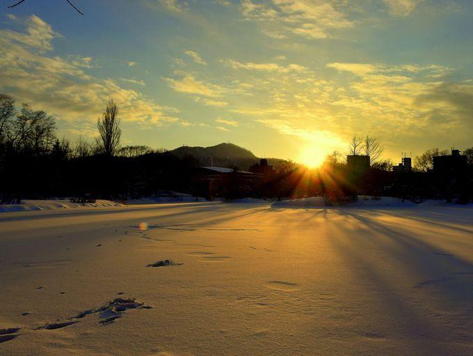 真っ白な雪原で雪遊び!歩くスキーやスノーシュー体験