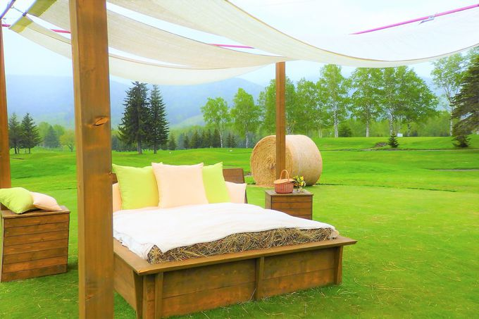 2017年7月「牧草ベッド」が星野リゾート トマムに誕生