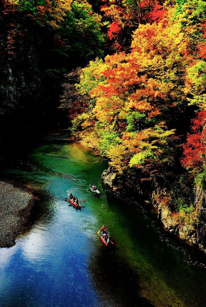 紅葉の渓谷にかかる朱色の「二見吊橋」