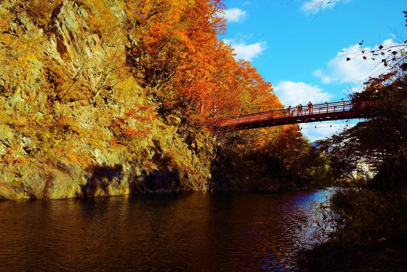 美しさ2種類。定山渓温泉 二見吊橋の紅葉&ライトアップ