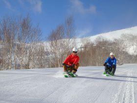 4.2キロのそり滑り!星野リゾート トマム「スノーカート」はワクワクがノンストップ!|北海道|トラベルjp<たびねす>
