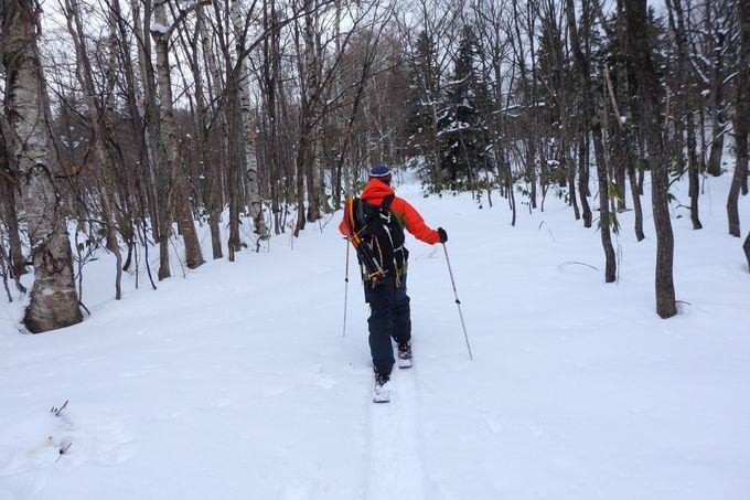 ふかふかの雪原やキラキラ輝く大気を感じるハイキング