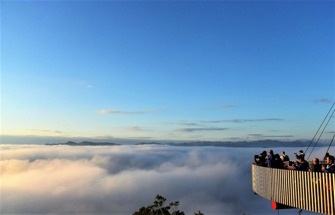 朝は早起きして「雲海テラス」へ