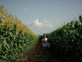 食料自給率1200%!十勝「いただきますカンパニー」絶景畑体験は自由研究にもおすすめ|北海道|トラベルjp<たびねす>