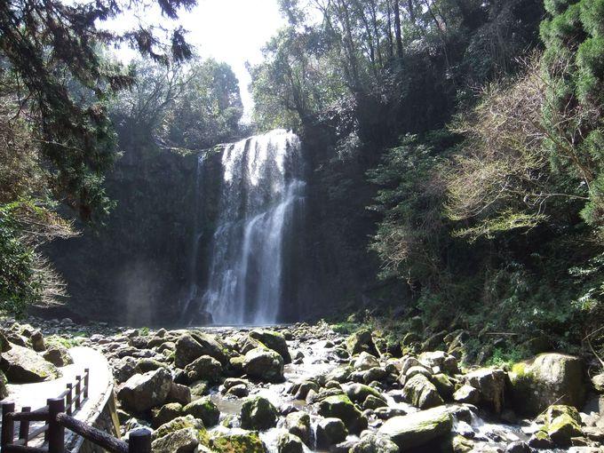 桜滝で緑たっぷり、マイナスイオンを浴びよう!