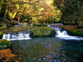アクセス便利!熊本県「菊池渓谷」で大自然と紅葉を満喫しよう|熊本県|トラベルjp<たびねす>