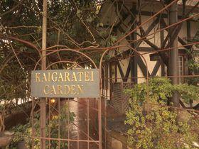 千葉・八千代の住宅地に隠れた花のリゾート「貝殻亭ガーデン」で非日常アフタヌーンティーを!|千葉県|トラベルjp<たびねす>