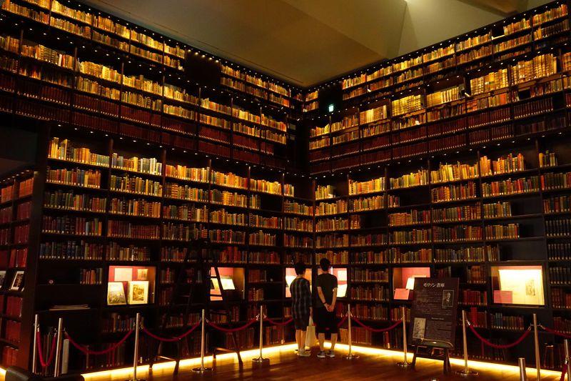 知識の迷宮を探検!駒込「東洋文庫ミュージアム」で時空を超える旅に出よう