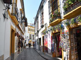 白い壁一面に花が咲き乱れる!スペイン・コルドバのユダヤ人街