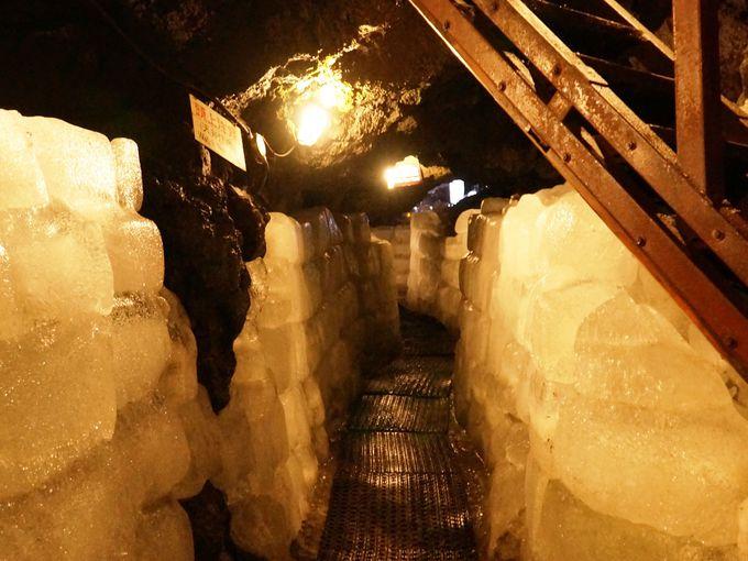 殿様への贈り物?!天然の氷の壁がびっしり!