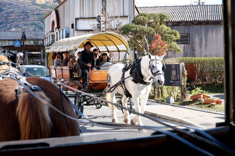 由布院来たなら揺られてみよう!パッカパッカと辻馬車で大自然に溶けこむ!