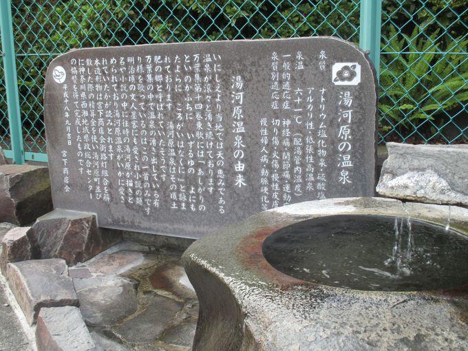 隠れ家的な名湯・湯河原温泉へ。