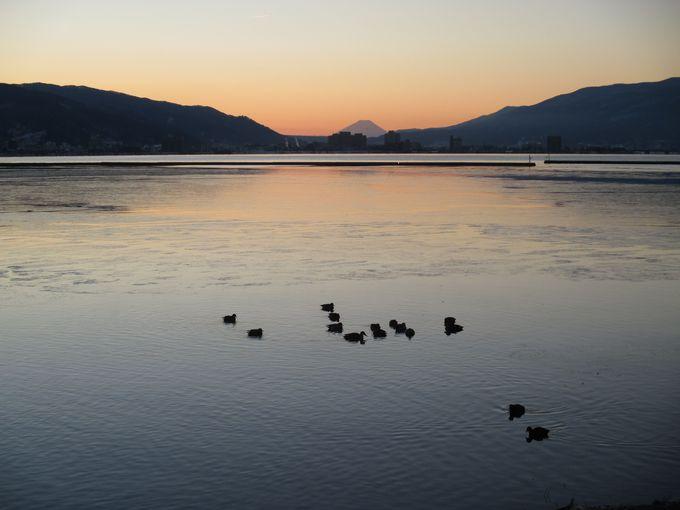 早朝には湖畔から富士山が見えることも!