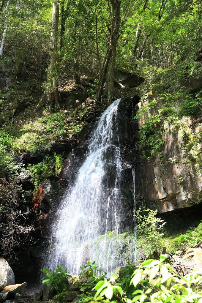 金時山から足柄峠方面へ。秘滝をめぐる足柄古道をへて温泉三昧