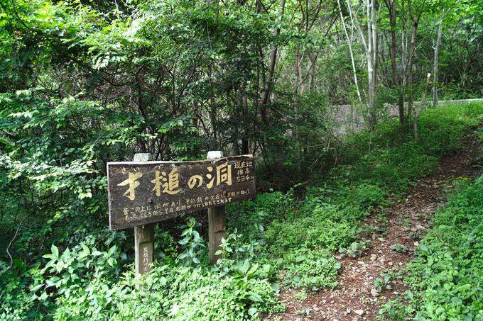 「玄岳ハイクコース」で絶景パノラマを目指す!