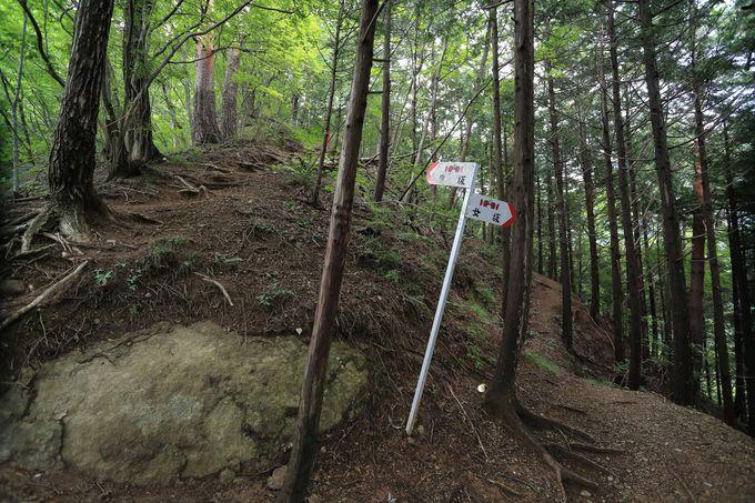 高川山へはしっかりした靴を用意!動画で確認